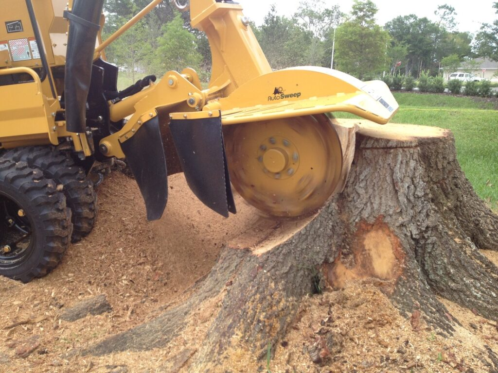 Orlando stump grinding